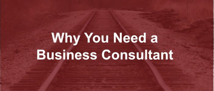 Why You Need a Business Consultant
